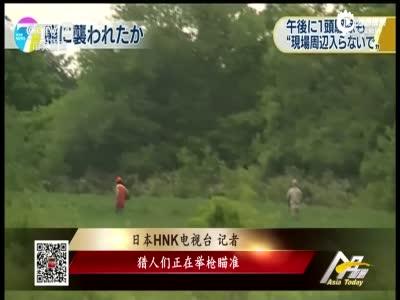 """日本""""杀人熊""""发狂咬死4人:警察找猎人击毙"""