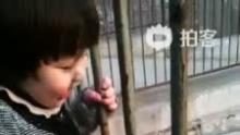 动物园吉祥最喜欢的事就是喂鹿!(来自拍客手机客户端 下载地址:http://video.sina.com.cn/app/sinapaike.html)